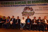 Rights and Sustainability for Forest Communities in Mexico