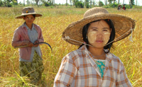 Shan Protection and Livelihoods Program in Myanmar